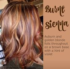 best summer highlights for auburn hair trendy hair highlights auburn hair with golden highlights fall