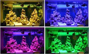 led reef aquarium lighting led accent lighting for tank diy for less than 20 smd 5050 led