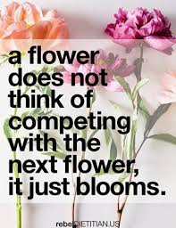 a flower you shouldn t 37 best flower quotes images on thoughts sunflowers and