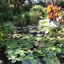Quail Botanical Gardens Free Tuesday San Diego Botanic Garden California Suites Hotel