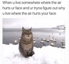 Cold Weather Meme - cold weather meme tumblr