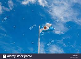 argentinian flag buenos aires argentina stock photo royalty