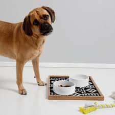 modern dog bowls and trays from deny designs dog milk