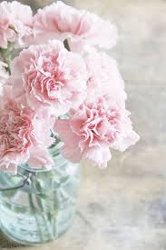 fleurs mariage repérages mariage 4 les fleurs d été rue rivard