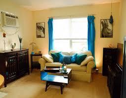 Living Room Elegant Apartment Furniture Ideas Apartment Zero - Rectangular living room decorating ideas