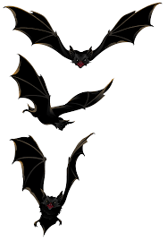 transparent halloween background bats clipart transparent clipartfest