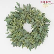 speciality greens wreath 12 inch wholesale blooms by the box