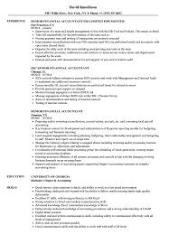 accountant resume exles senior financial accountant resume sles velvet