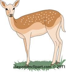 images deer clipart clipartxtras