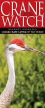 41 best sandhill crane migration images on pinterest crane