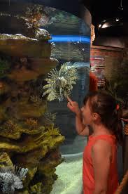 Ohio travel fan images 41 best fan photos images aquarium cleveland and ohio jpg