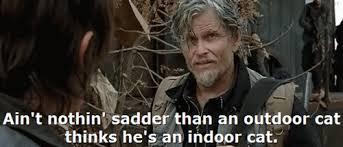 Daryl Walking Dead Meme - daryl s alexandria curse the walking dead the walking dead meme