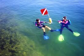 Arkansas snorkeling images Area fun pine lodge jpg