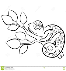 coloring pages wild animals little cute chameleon stock vector