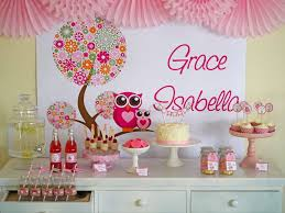 baby shower decorations for a girl owl baby shower decorations girl office and bedroom owl baby