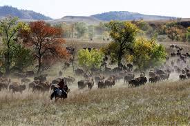 South Dakota scenery images South dakota 39 s best scenic drives jpg