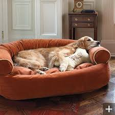 Dog Bed Furniture Sofa by Best 25 Personalized Dog Beds Ideas On Pinterest Dog Beds Dog
