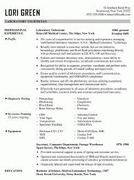 Sample Resume Computer Technician by Computer Technician Resume Samples Visualcv Database Within Sample
