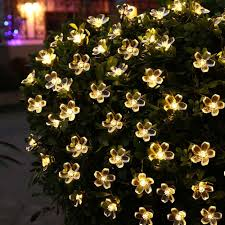 warm white solar fairy lights qedertek solar christmas string lights 21ft 50 led fairy flower