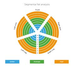 tanita scales understanding your measurements tanita