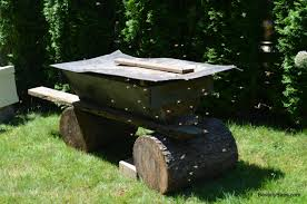 How To Make A Top Bar Beehive How To Install Package Bees In A Top Bar Hive Beverly Bees