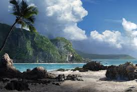 palms nature clouds sky rocks desktop