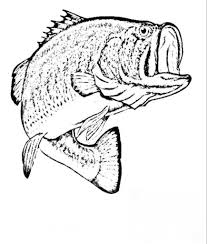 bass coloring pages virtren com