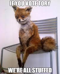 Stoned Fox Meme - stoned fox meme generator imgflip