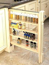 kitchen cabinet storage containers incredible kitchen cabinet storage organizers cabinets modern for 19