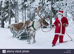 santa sleigh reindeer stock photos u0026 santa sleigh reindeer stock