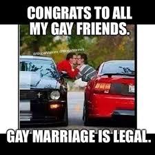 Ford Mustang Memes - gay ford mustang memes mne vse pohuj