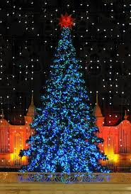 653 best christmas light cheer images on pinterest christmas