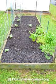 my almost square foot garden family balance sheet