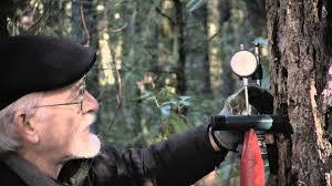 charles s greenwood p e tree fasteners