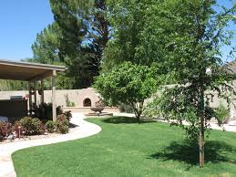 decor of phoenix backyard landscaping ideas artificial turf