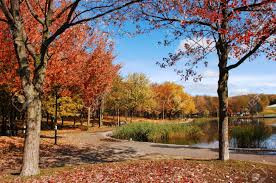 fall in the park with colorful trees blue sky and a lake