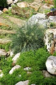 specialty garden landscape designs offers a variety of choices