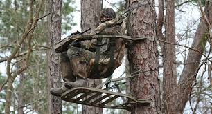 treestand safety checklist
