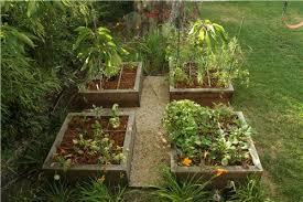 vegetable garden design raised beds home interior design ideas