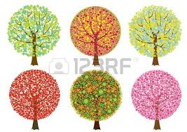 colored trees on white background royalty free cliparts