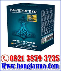 goldendict forum view topic 082138793735 hammer of thor obat