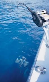 deep secrets salt water sportsman