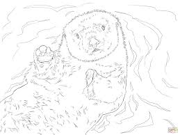 sea otter portrait coloring free printable coloring pages