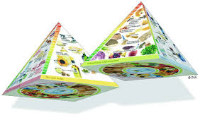 three dimensional pyramid of the german nutrition society dge