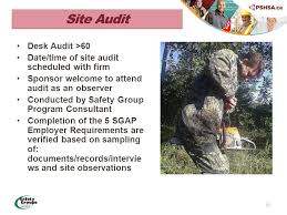 Desk Audit Definition Welcome Meeting 1 Program Guidelines 2 Pshsa Safety Group