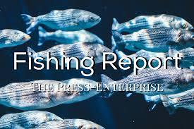 fishing report july 6 u2013 press enterprise