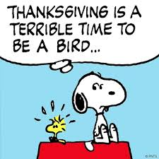 89 best snoopy thanksgiving images on peanuts snoopy