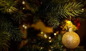 where to buy christmas tree lights tree shopping where to buy real and fabulous fakes in singapore