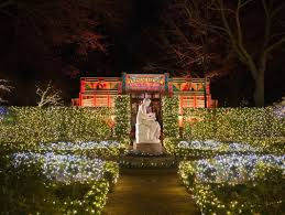 Zoo Light Houston by Bayou Bend Goes Holiday Crazy With