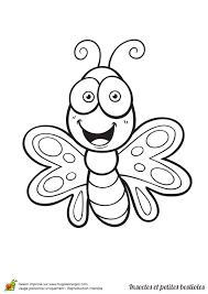 Coloriage Dessin à colorier insecte et petite bestiole un papillon